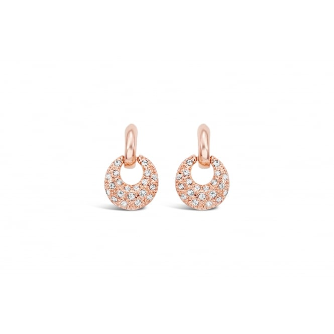 Small Round Hook Rose Gold Plated Earrings 20mm drop